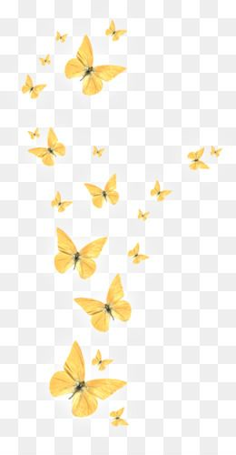 Butterfly Golden Butterfly Girasol En Acuarela Photoshop Elementos Dibujos Simples Tumblr