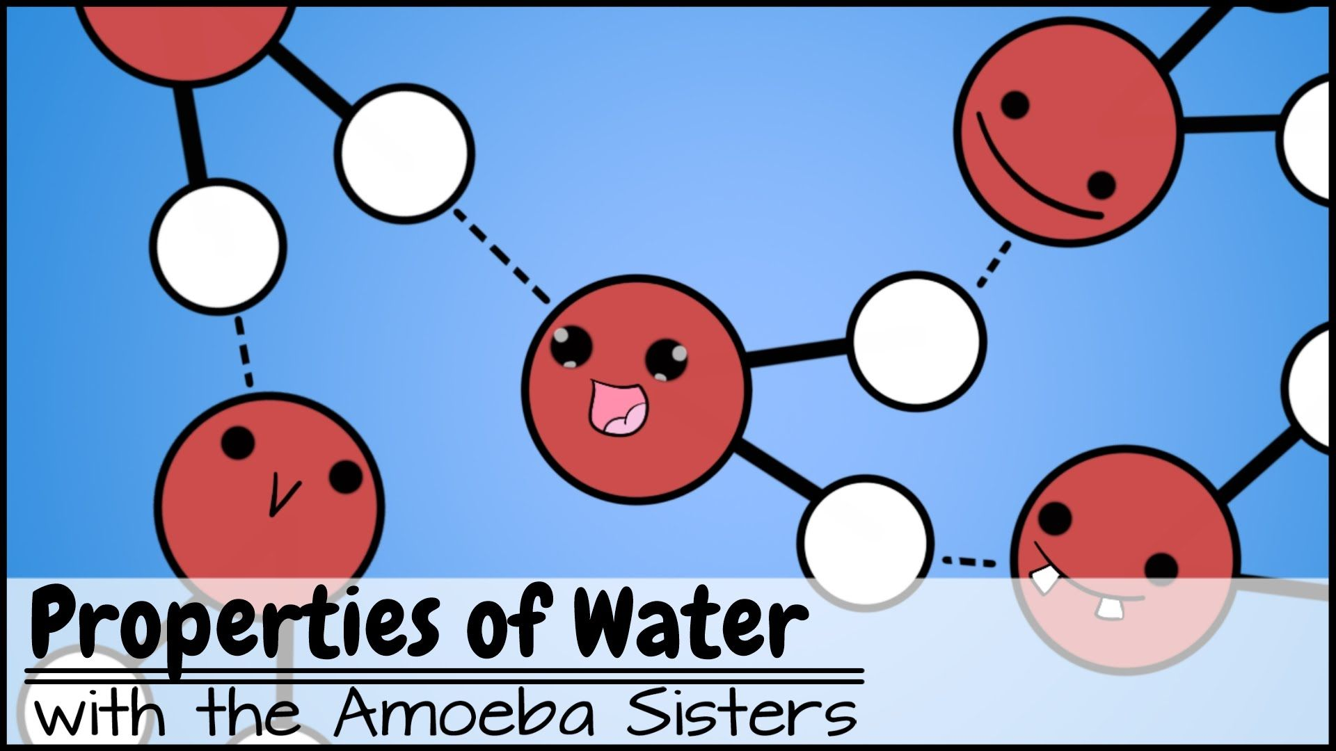 Explore Some Properties Of Water With The Amoeba Sisters