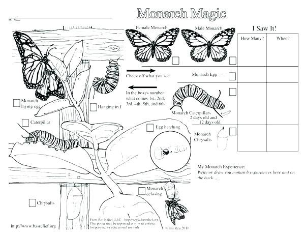 Coloring Monarch Butterfly# 2043515 | Monarch | Monarch ...