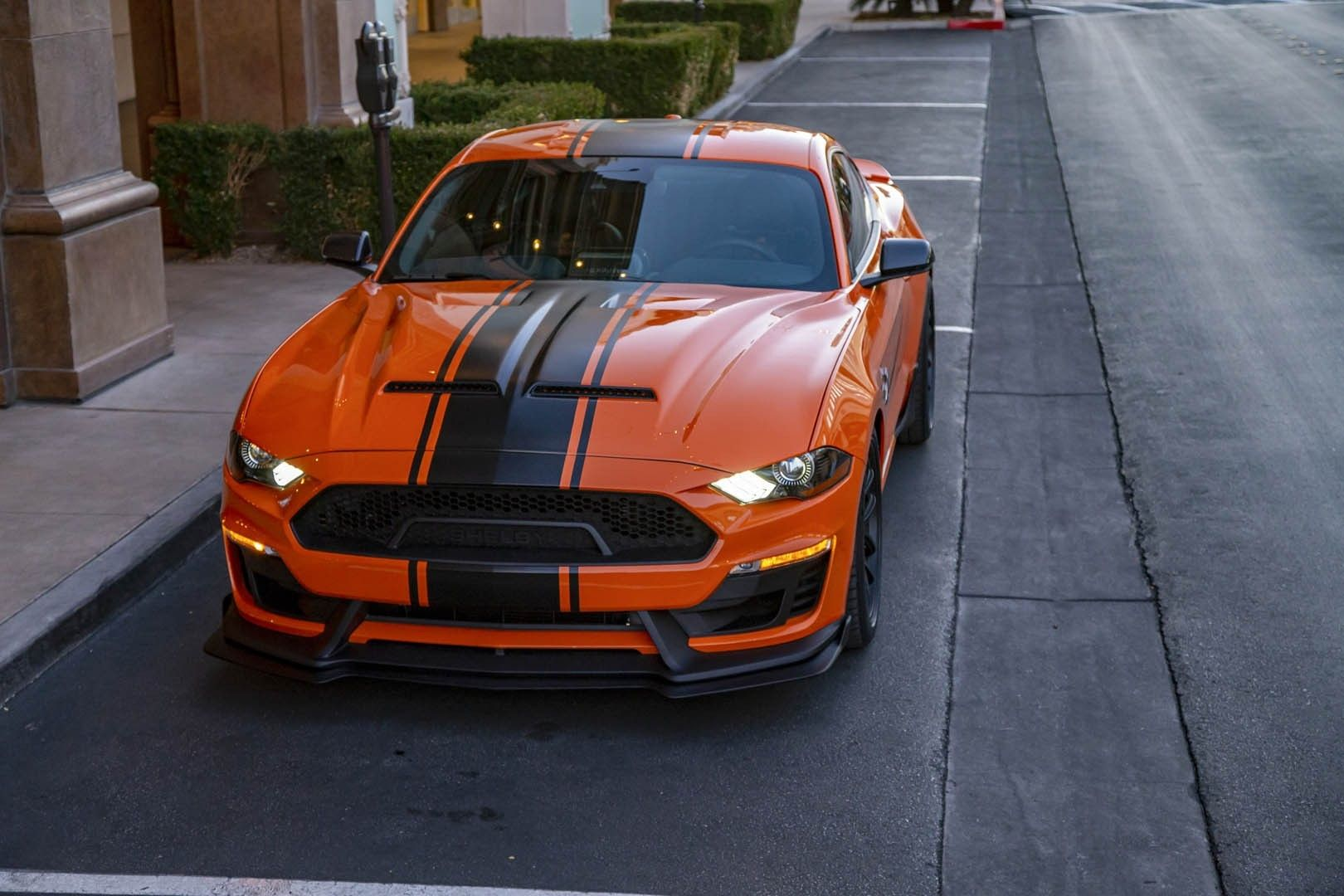 2020 Ford Mustang Shelby Super Snake Bold Package Ford Mustang Shelby Mustang Shelby Super Snake