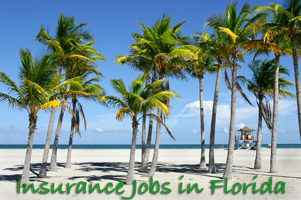 Insurance Jobs In Florida Hiring Career Insurance Florida