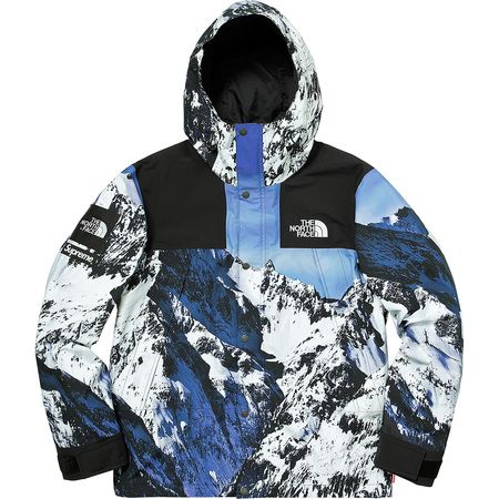 Supreme®The North Face® Mountain Parka