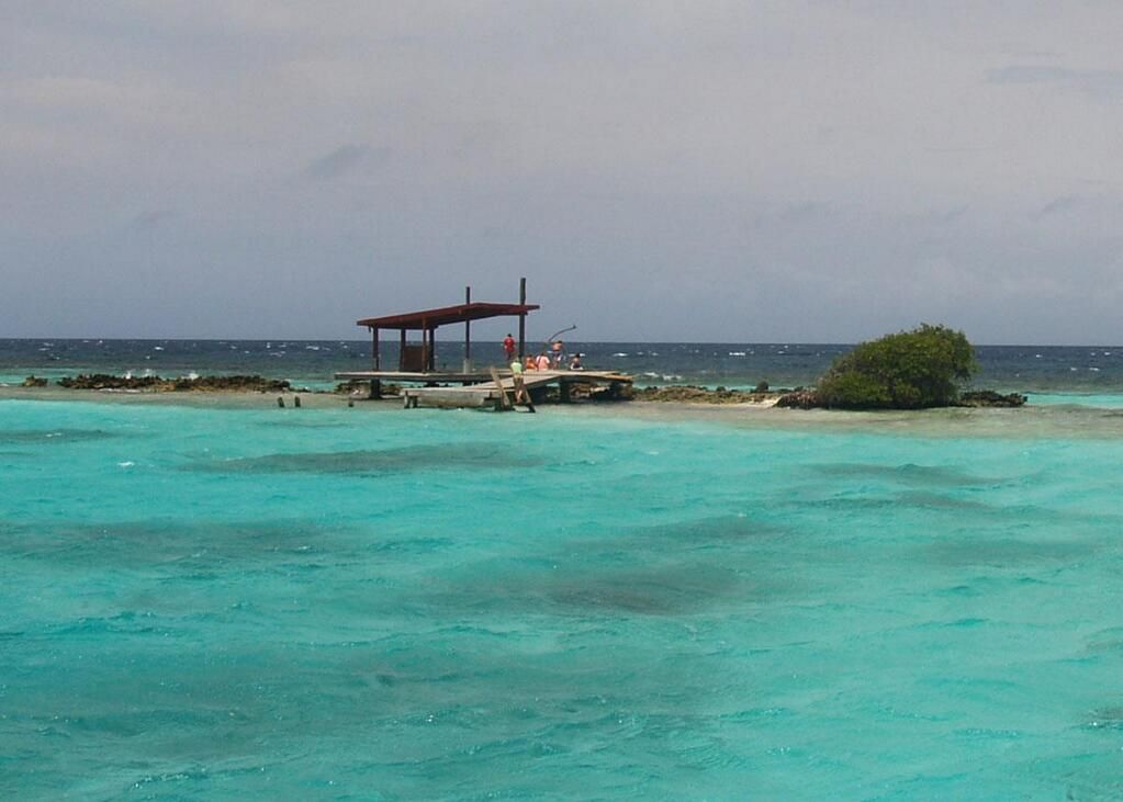 Mikeu0027s Reef Aruba Mikeu0027s Reef Aruba