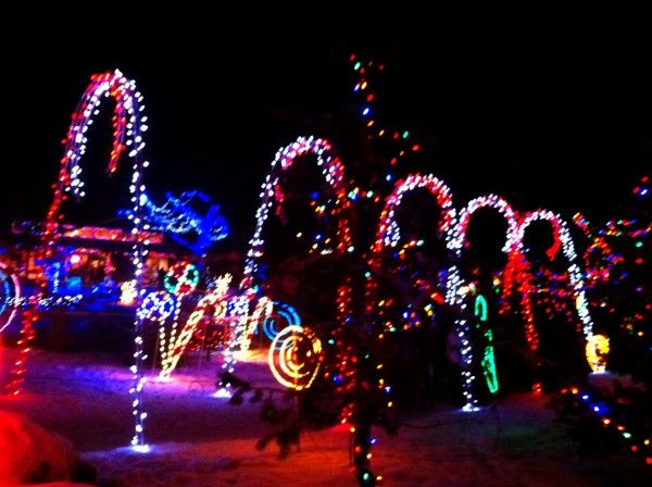 Christmas In Calgary Canada.Canada The Best Places To Visit Family Traditions Zoo