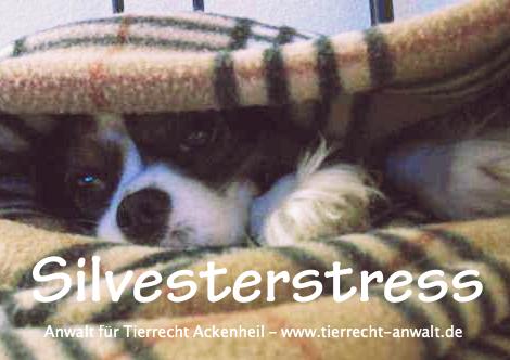 Silvester Hund Feuerwerk : Tierrechtsanwalt (anwaltTierrecht) Anwalt Ackenheil auf Twitter Kanzlei für Tierrecht    Hunderecht   Pferderecht   Tierarzthaftung   Zuchtrecht  #silvester #hund #dog #pferd #haustiere #feuerwerk