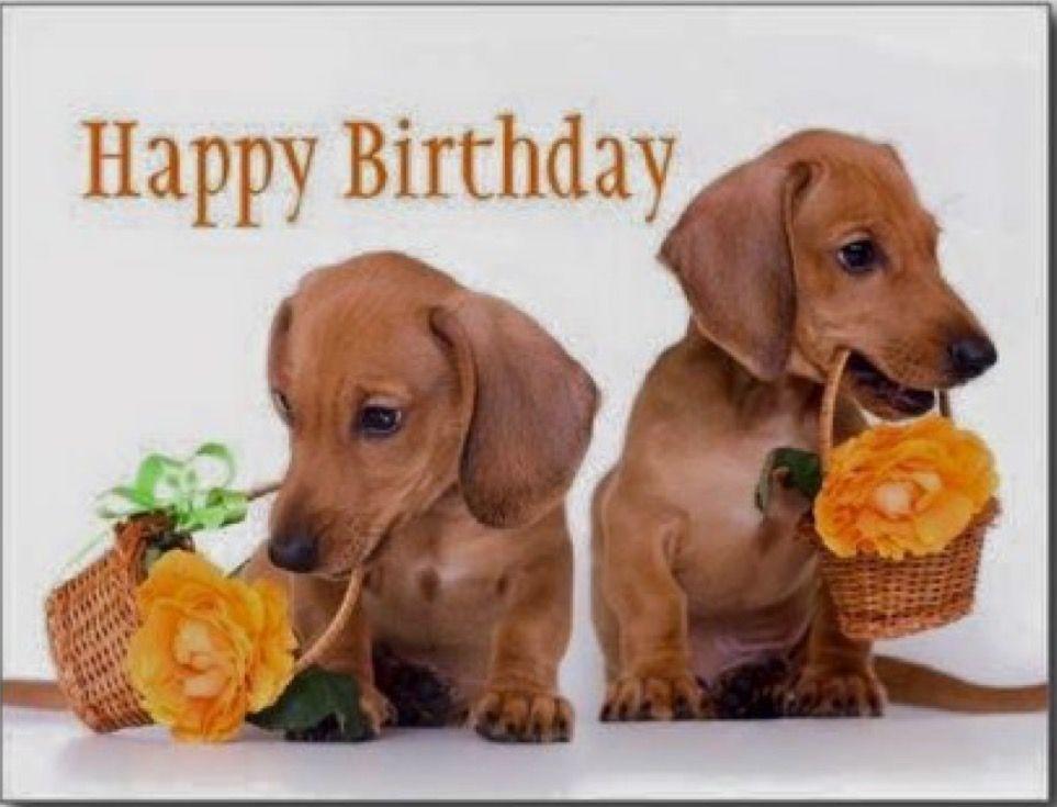 Birthday Wishes By Paulette Adamski Dachshund Birthday Happy