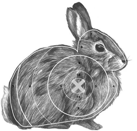 It is an image of Modest Printable Animal Targets