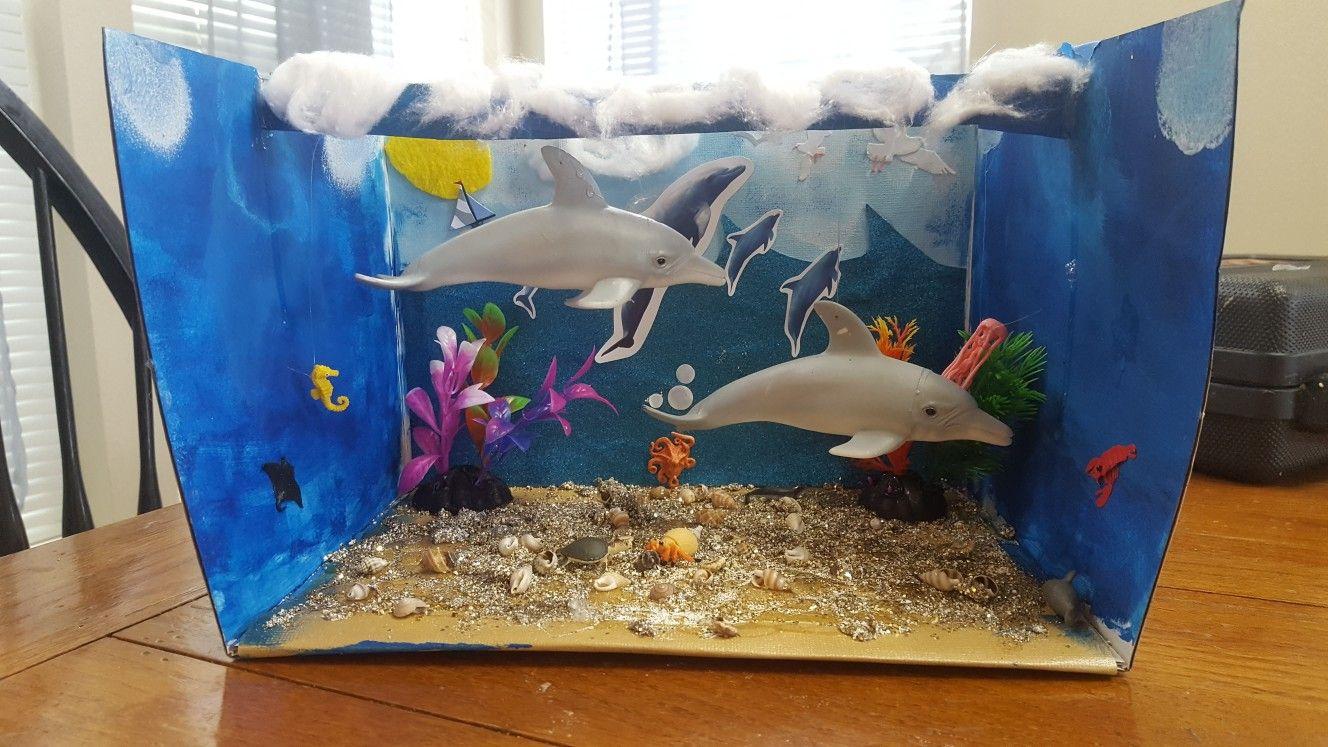 Dolphin Habitat Diorama 2nd Grade Kid School Projects