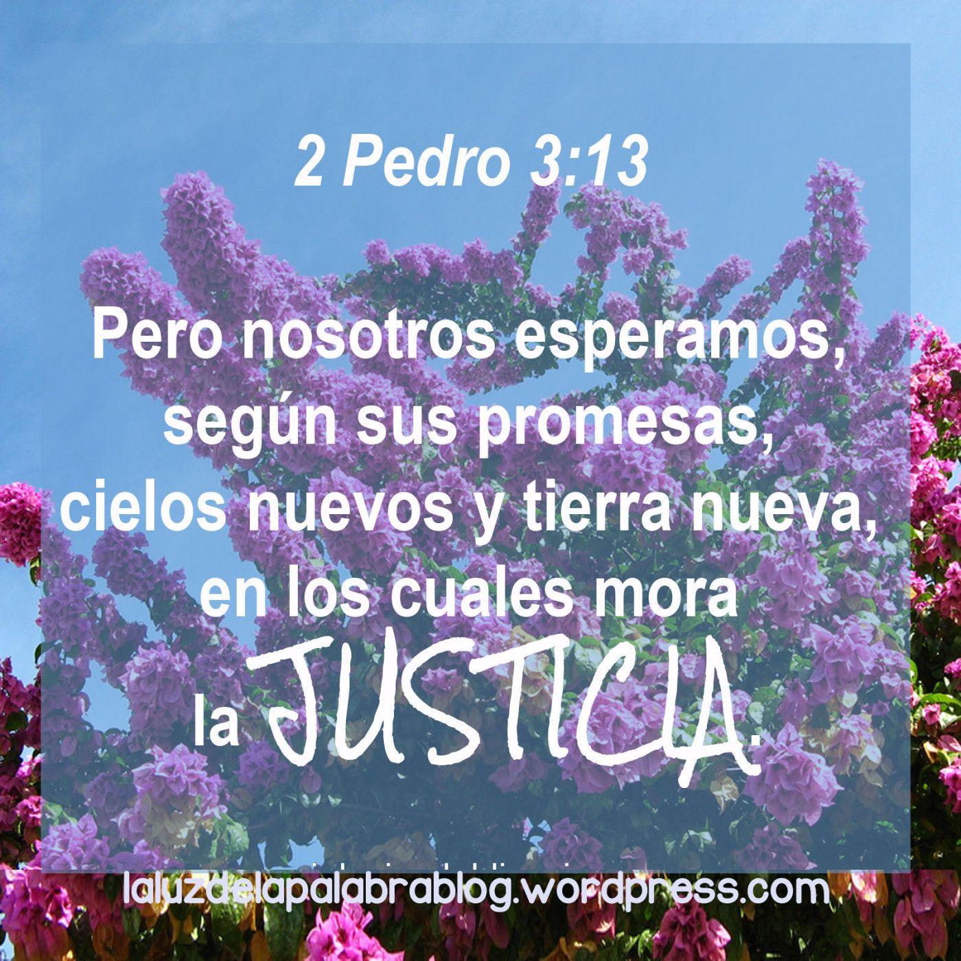 2 Pedro 313 Palabra De Dios Frases Dios Y Mensaje De Dios