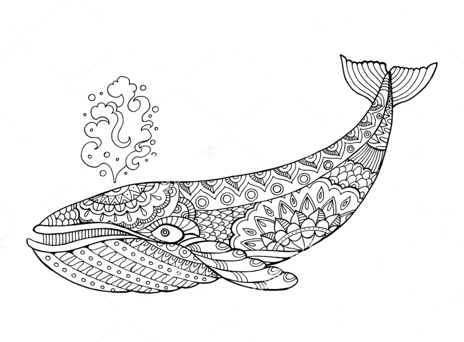 Whale Zentangle Coloring Page Animal Coloring Books Coloring