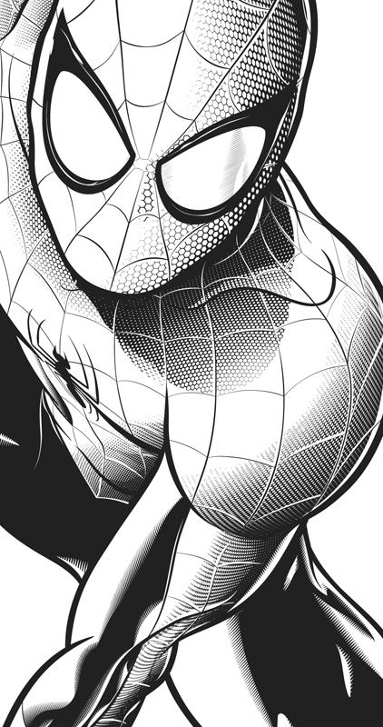 Spiderman Para Colorear Buscar Con Google Camaras