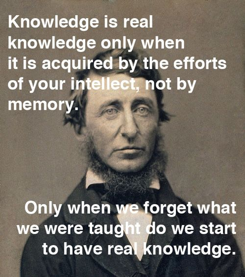 Pin By Gabriela Alonzo On Notes Quotes Wisdom Quotes Thoreau Quotes Knowledge And Wisdom