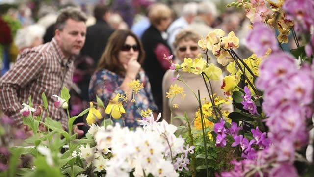 Visitors looking at the Orchid Society of Great Britain display. RHS Chelsea Flower Show 2012