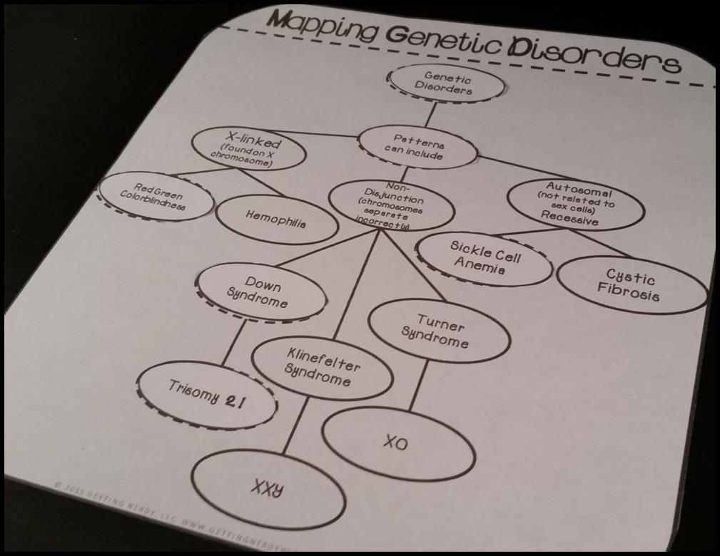 Science Interactive Notebook & Heredity