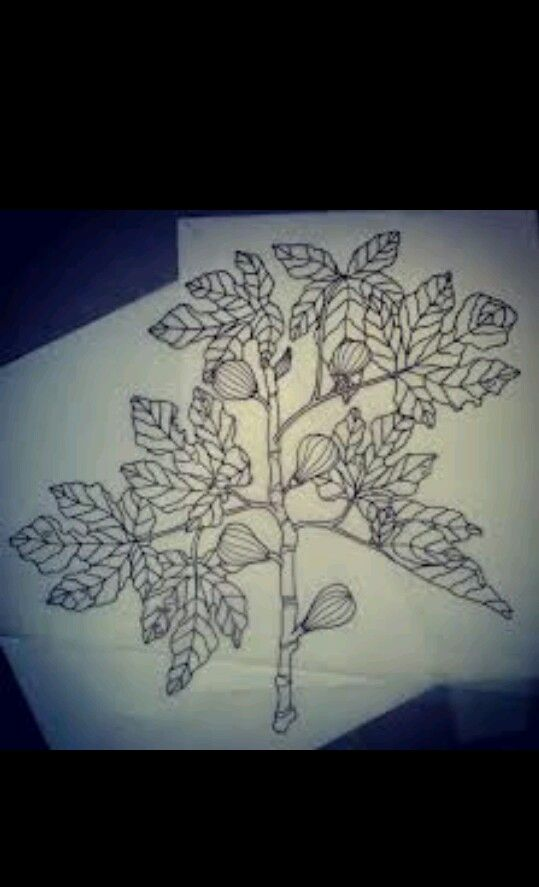 Baum-tätowierungen, Bäume Zeichnen, Feigenbaum