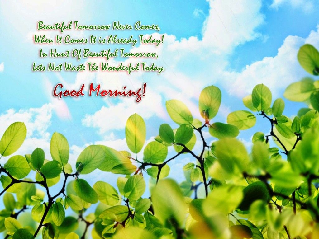 Beautiful Good Morning With Wishes Tap To See More Beautiful Good