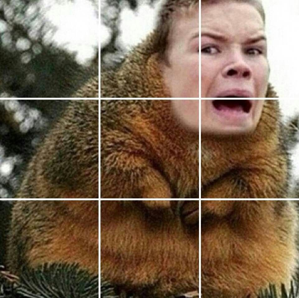 *SHOCKED SQUIRREL GALLY FACE*