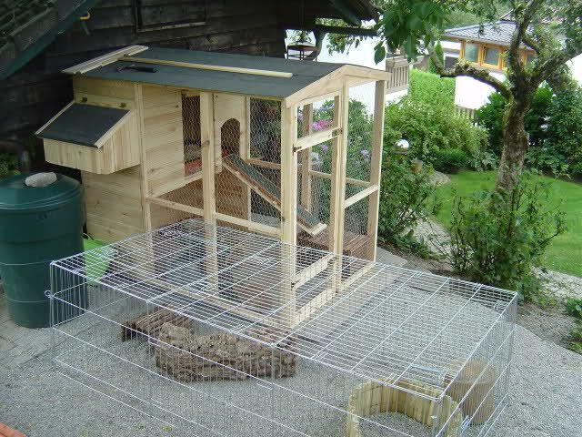 kaninchen forum tiergehege etc pinterest kaninchen forum kaninchen und hase. Black Bedroom Furniture Sets. Home Design Ideas