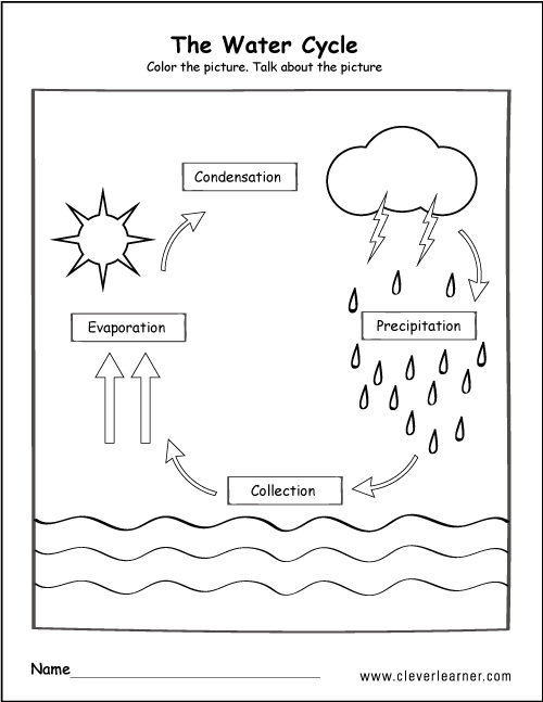 Science water cycle worksheet for kindergarten  rh pinterest com first grade also diagram block and schematic diagrams  artbattlesu