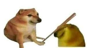 Imagen Busqueda De Google Mascotas Memes Memes Divertidos Memes De Animales Tiernos
