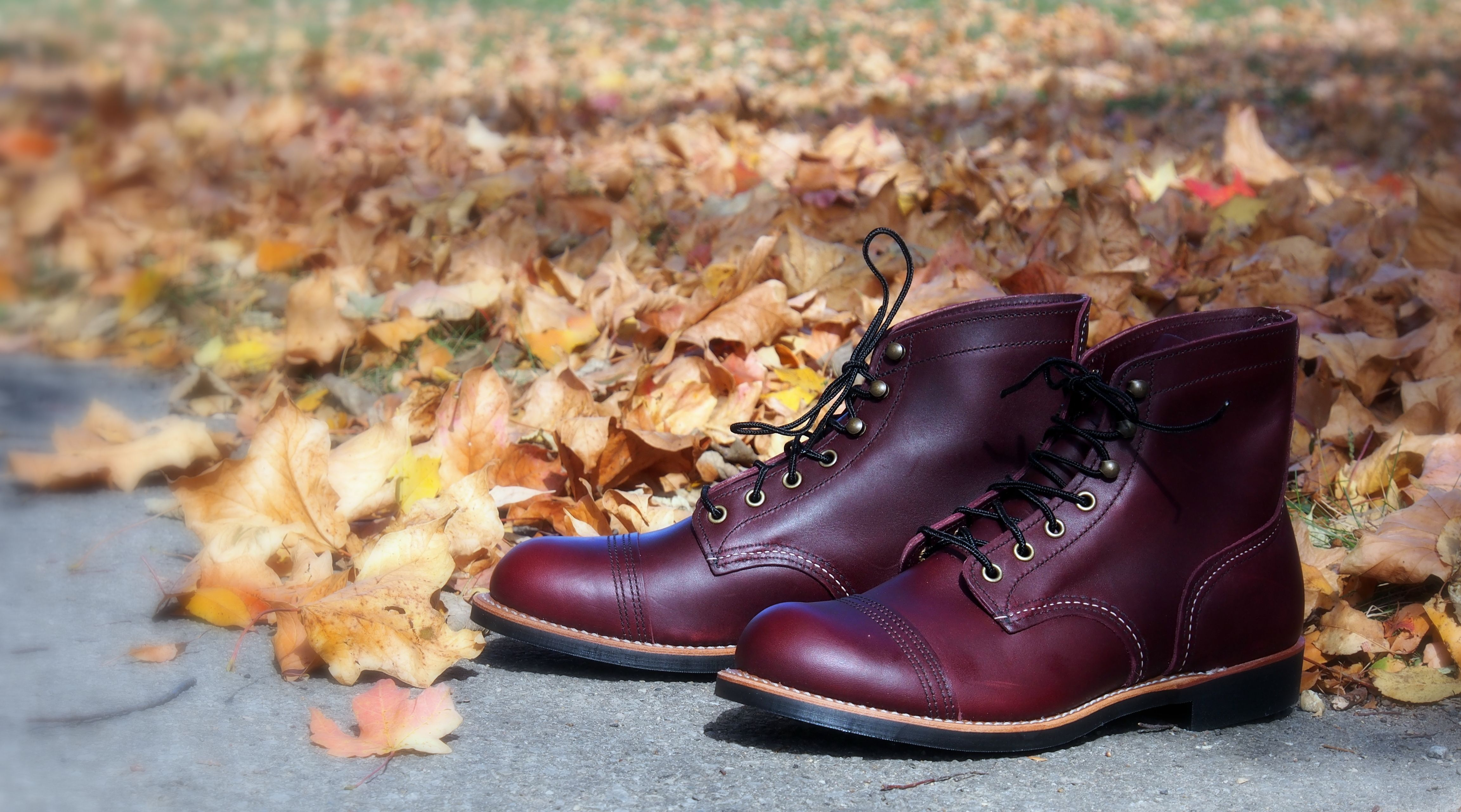 91ab317c03c New Red Wing Oxblood Mesa Iron Rangers 8119! Get it now at www ...