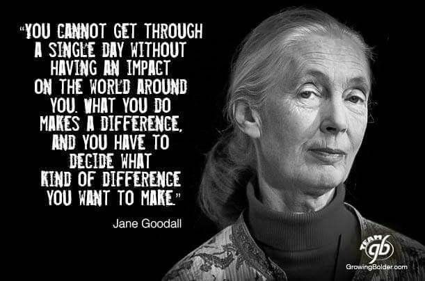 Jane Goodall Quotes | Jane Goodal Activism Quotes Words Jane Goodall