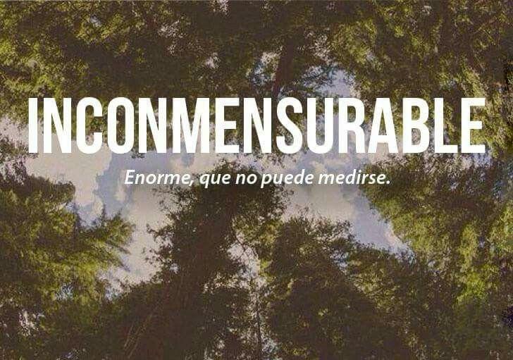 Palabras. Inconmensurable | Palabras bonitas, Palabras cultas, Palabras  extrañas