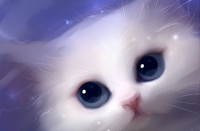 Image Result For Cute Baby Cats Blue Eyes Cat Art Animal