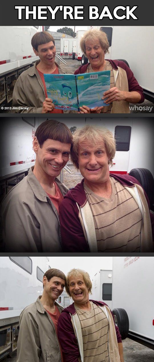 Jim Carrey and Jeff Daniels together again�