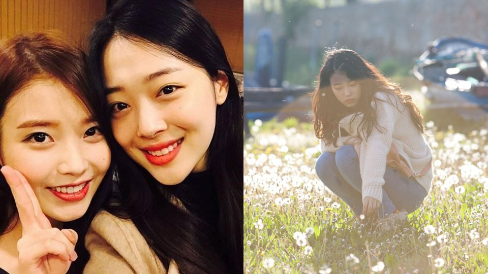 Iu S 2012 Song Peach Reenters Charts In Remembrance Of Sulli Songs Sulli Male Perspective