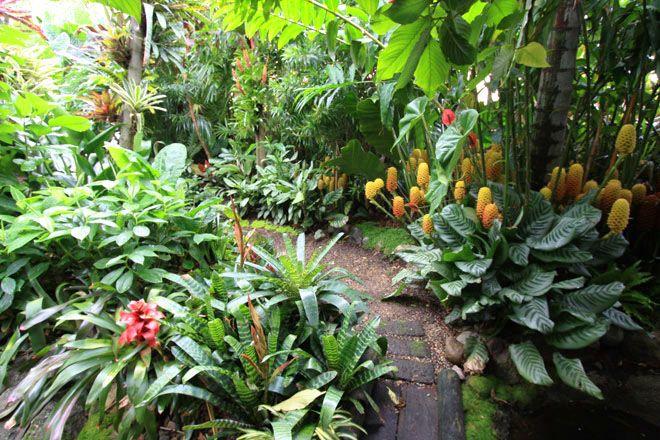 the marvellous garden of dennis hundscheidt  australia
