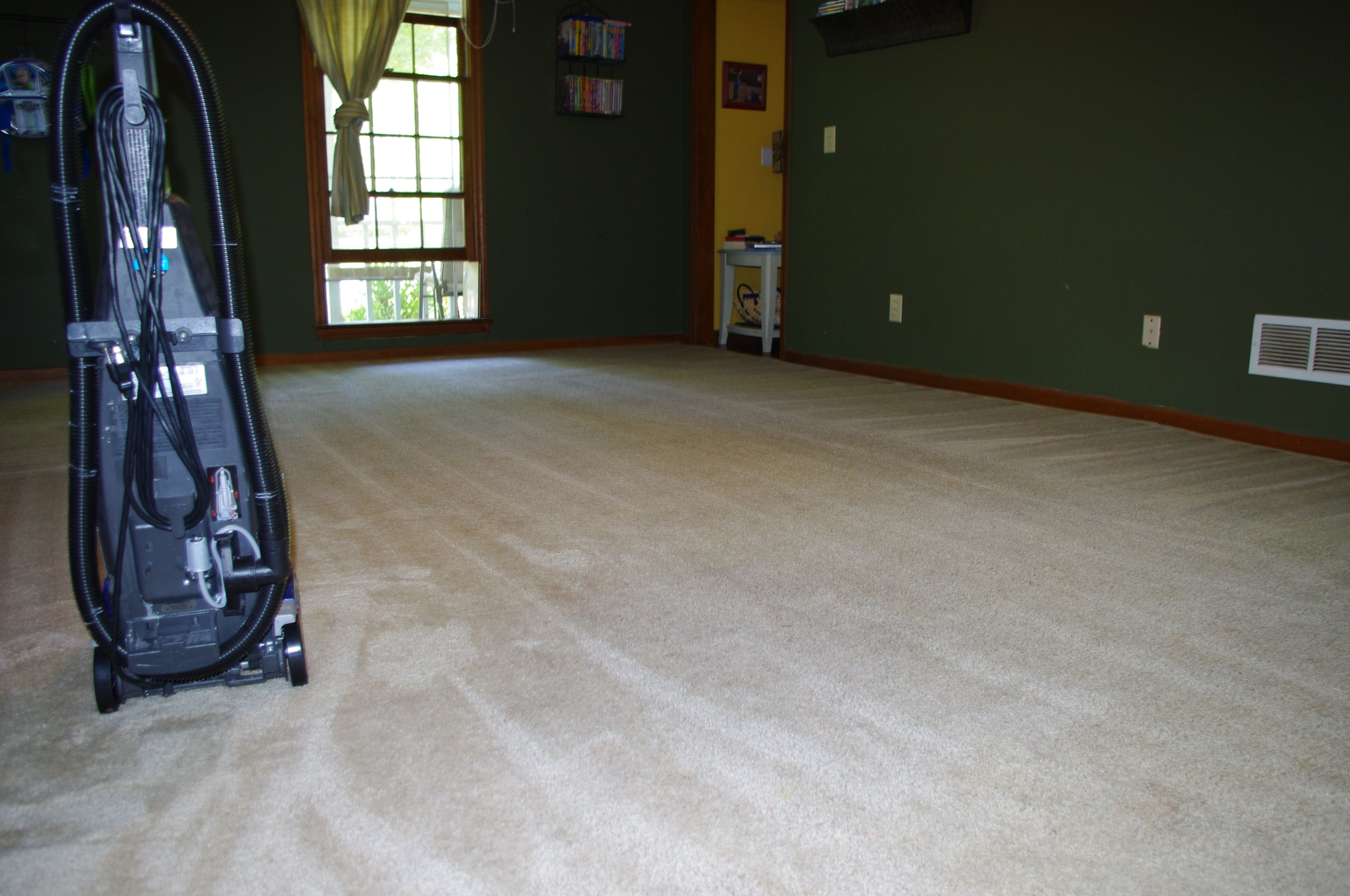 Carpet Cleaning How To Clean Carpet Cleaning Hacks Diy