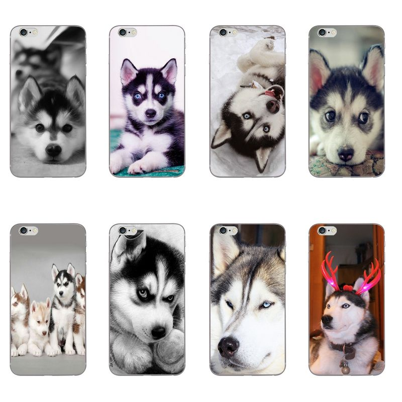 Phone Case For Apple iPhone 5 5C SE 6 6S Plus Back Cover 4.7 5.5 Inch Wacky Husky Painted Design Soft TPU Protection Shell