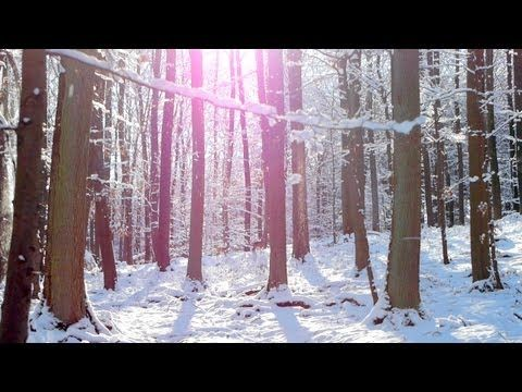 free mp3 download classical music instrumental