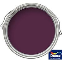 Purple-Exterior-Gloss-Paint. Dulux Weathershield Royal Berry Exterior Gloss Paint 750ml