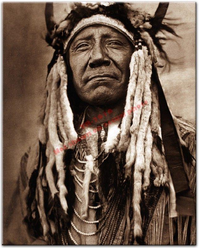 Great White Buffalo Native American Headdress Tattoo: Famous Native American Indians