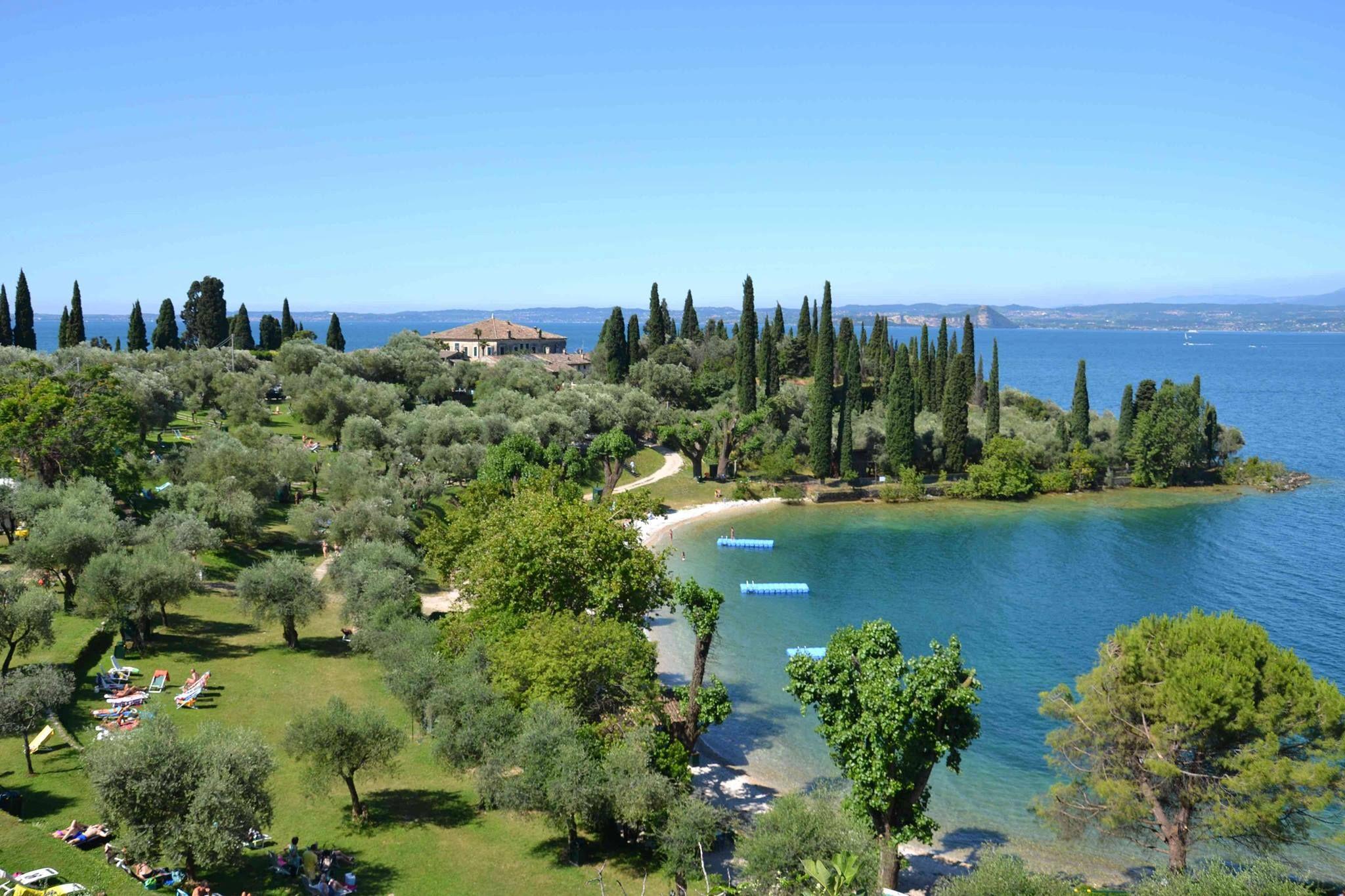 Pin Su Lago Di Garda