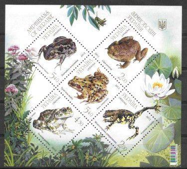 Buy Toads Online