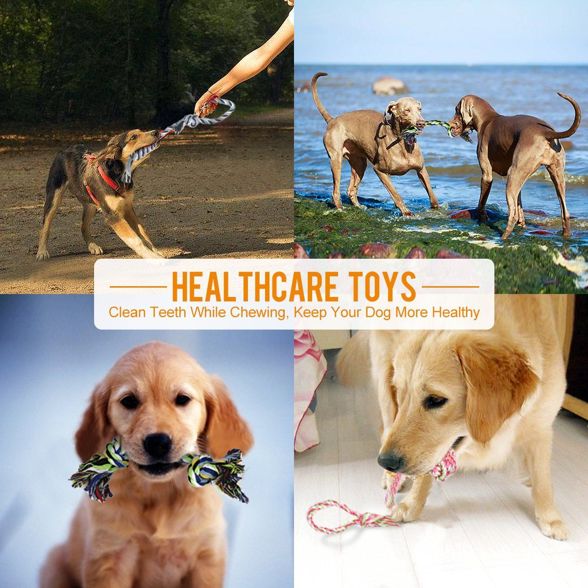 Mothca Puppy Toys 8 Pack Dog Chew Toys For Small And Medium