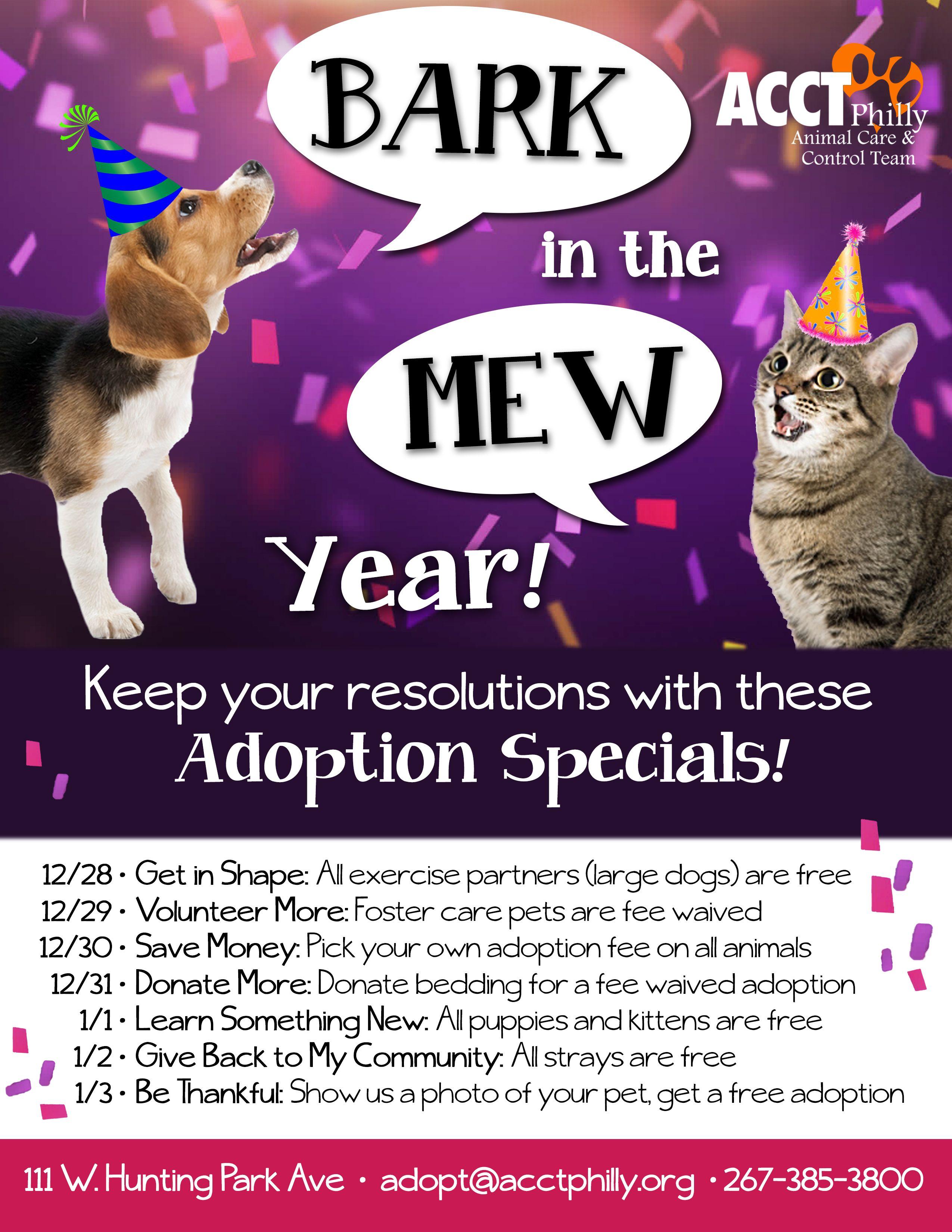 Pin by Nikki Spanier on Shelter Ideas Pet adoption event
