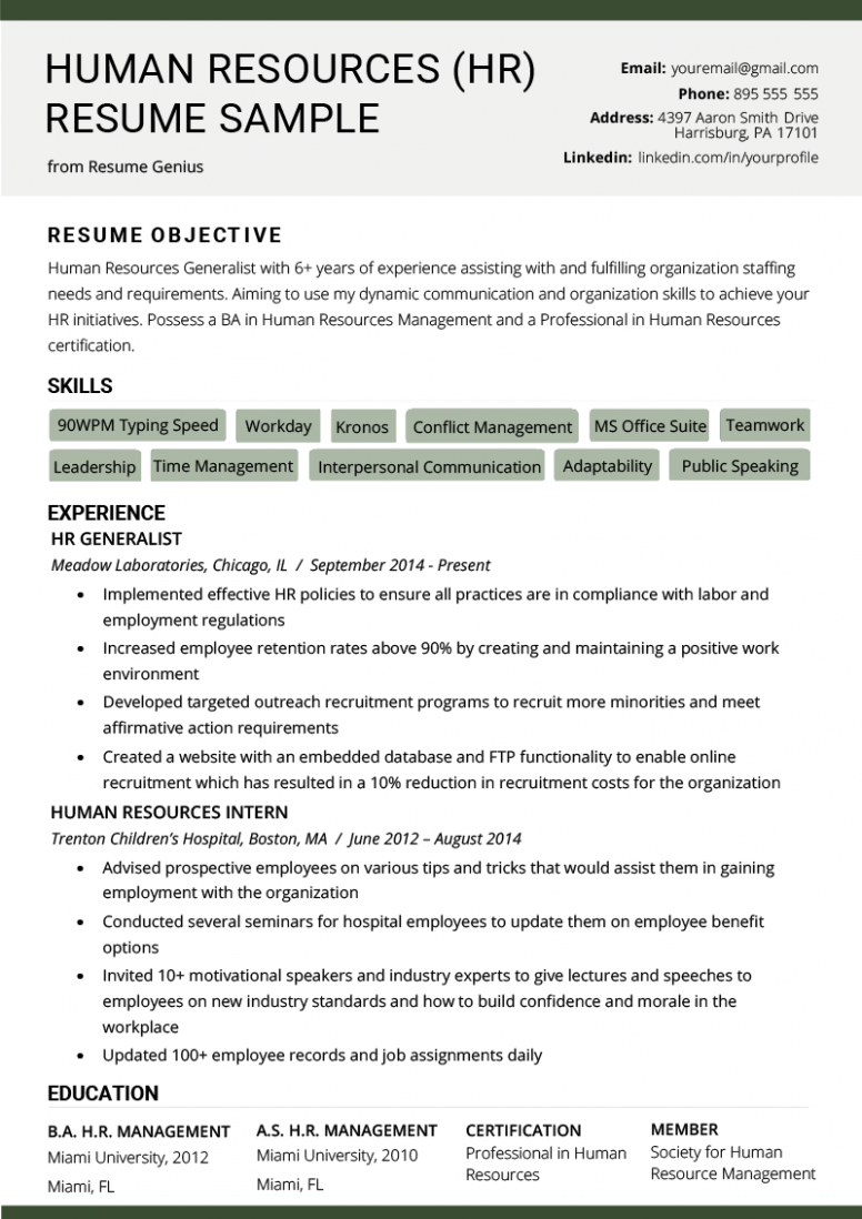 11 Free Hr Skilled Resume Templates Human Resources Resume Resume Objective Examples Hr Resume