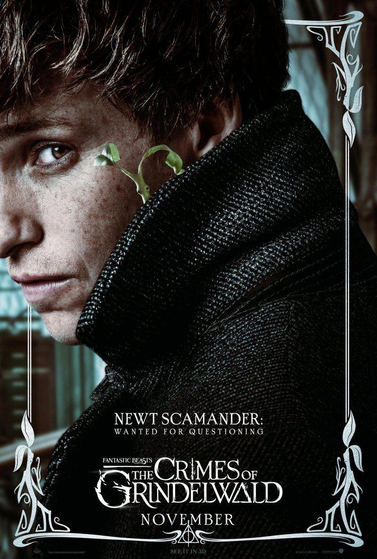 Fantastic Beasts The Crimes Of Grindelwald Eddie Redmayne As