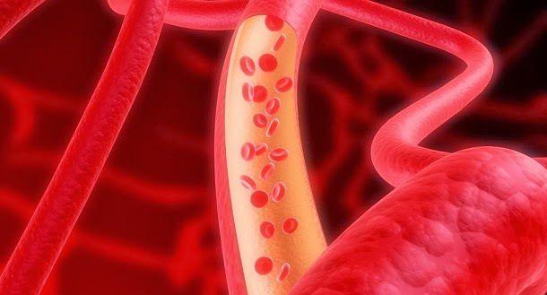 A verdade sobre o colesterol | CLICK NA IMAGEM - NOTÍCIAS DE SITES E BLOGS.