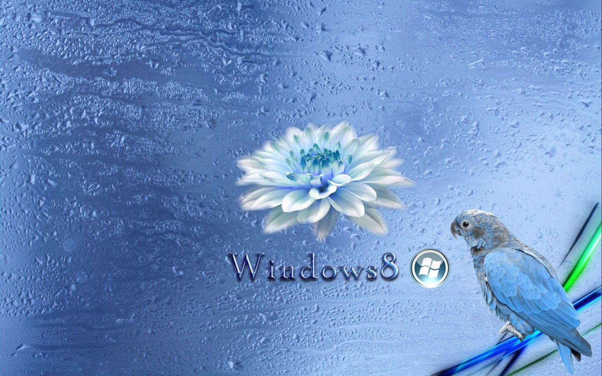 Px Windows 8 Image For Large Desktop By Bainbridge Gill