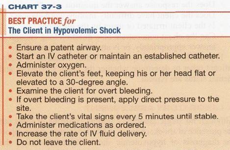 Nursing Case Study Hypovolemic Shock - Words   Bartleby