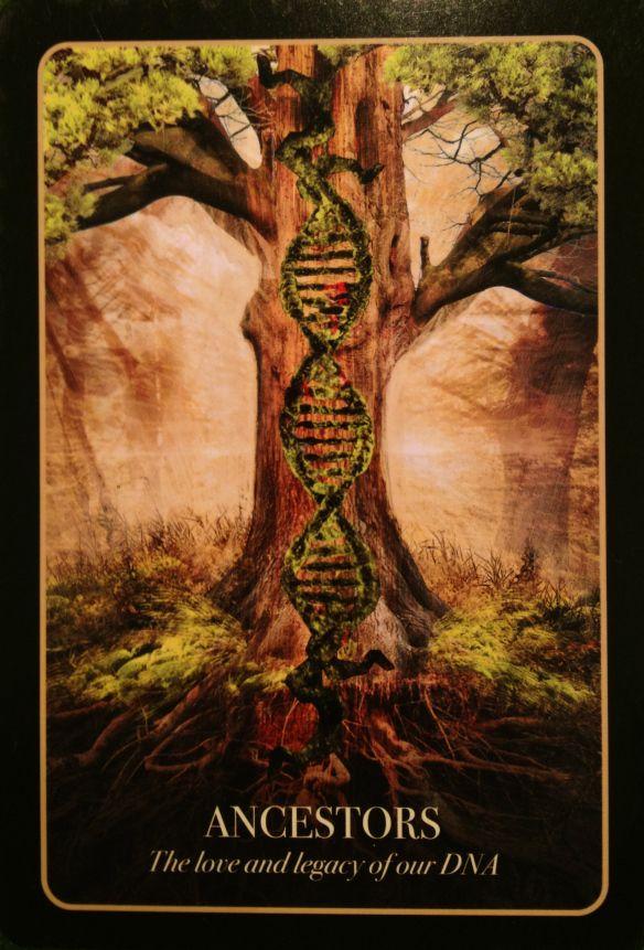Ancestors #ancestors