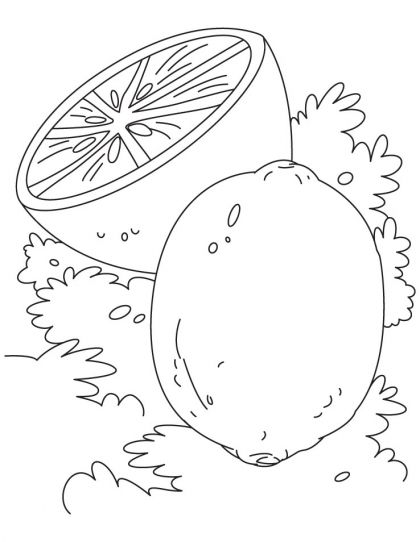 Lime Coloring Page Download Free