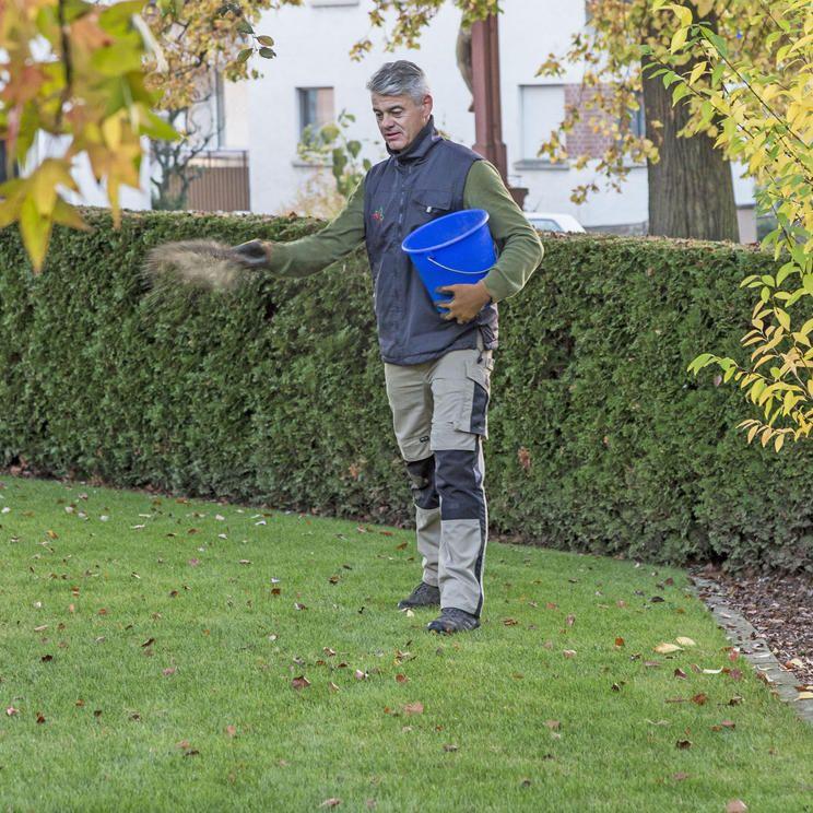 Moos Im Rasen Erfolgreich Bekampfen Rasen Dungen Moos Im Rasen Rasen