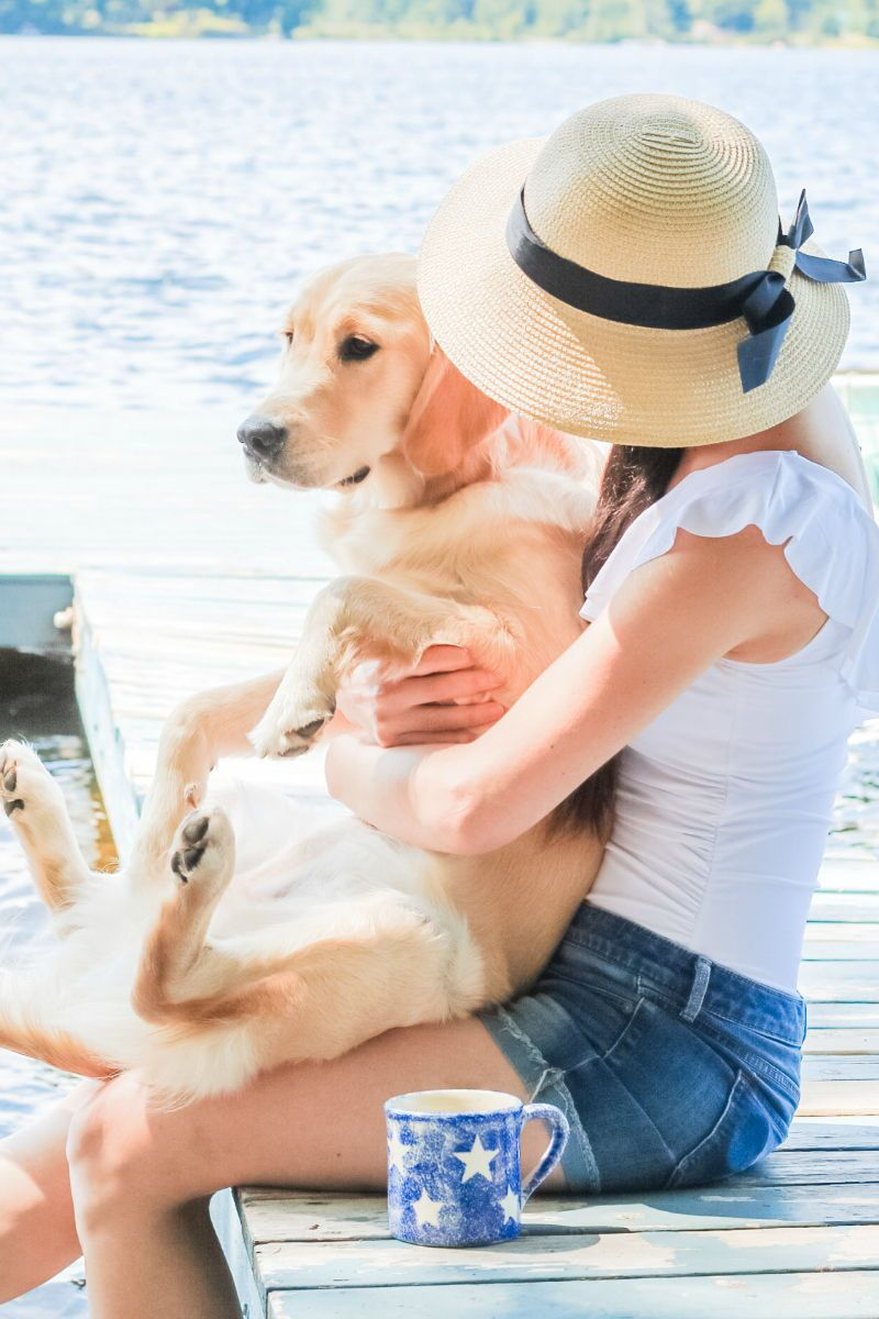 How To Get An Emotional Support Animal Letter Relevant Info And