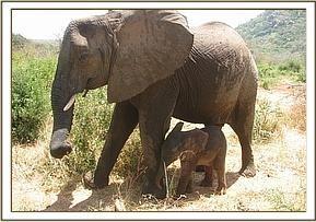 Kinna with Yatta's baby